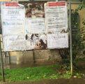 Necrologi strappati, il caso arriva in Municipio