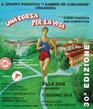 corsaperlavita2014.JPG