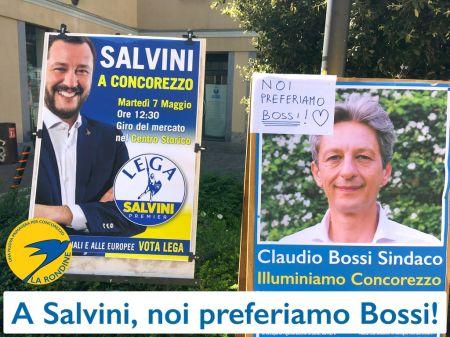 rondine_bossi.jpg